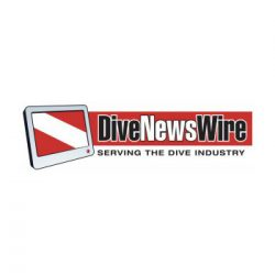 Dive News Wire logo